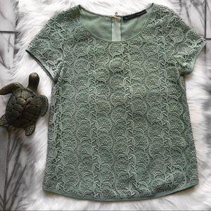 Zara Basic Seafoam Lace Crochet Zipper Back Top